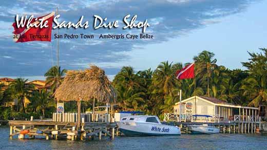 Belize scuba diving lessons padi white sands dive shop san pedro ambergris caye elearning - Ambergris dive resort ...